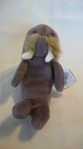 Jolly the Walrus Ty Beanie Baby DOB December 2, 1996 - $6.92