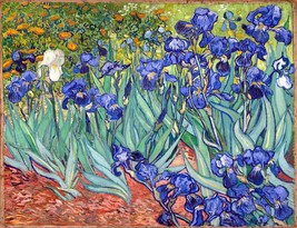 Irises Painting by Vincent van Gogh Art Reproduction - $32.99+