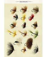 Hackles Flies - 1892 - Fishing Illustration Poster - $9.99+