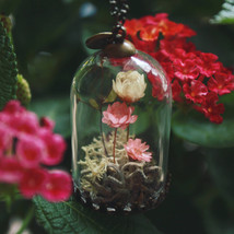 Dried flower necklace,real moss,terrarium jewelry,mini garden terrarium,... - $37.25