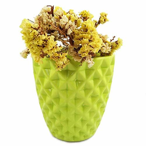 Orchid Pot, 5 Inch Green Ceramic Planter Cactus Plant Container, Diamond Design