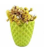 Orchid Pot, 5 Inch Green Ceramic Planter Cactus Plant Container, Diamond... - $20.57