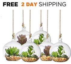 6 Air Plant Terrarium Glass Hanging Planter Plant Pots Container Candles... - $28.33