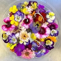 Edible Flower Mix Seeds - Flower Seeds - Starts Nursery - Outdoor Living - $25.50+