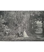 HUNTING Shooting Hummingbirds - 1878 Fine Quality Print - $35.96