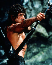 Sylvester Stallone Barechested Crossbow Classic Rambo First Blood Photo & Er 16 - $69.99