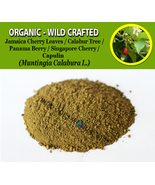 POWDER Kerson Leaf Jamaica Panama Cherry Calabur Tree Capulin Muntingia ... - $16.40+
