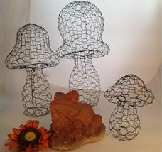 Mushroom Topiary Frame (Medium) - $55.00