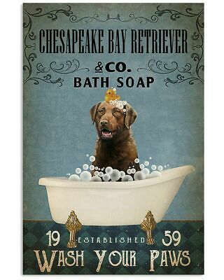 Primary image for Chesapeake Bay Retriever Take A Shower, Poster For Bathroom, Gift For Family
