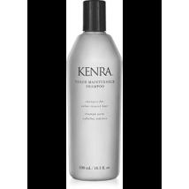 Kenra Color Maintenance Shampoo - $12.00