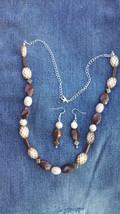 Earth-Tone Necklace & Earring Set - $20.00
