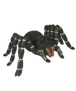 Darice Fun World Halloween Spider Decoration: Black, 17 x 5 inches w - $33.99