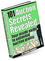101 eBay Auction Secrets eBook Make Money Working From Home Selling Online  - $0.99