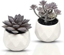 Leafresh Decorative Artificial Plants Potted Mini Fake Succulent Purple - $21.38