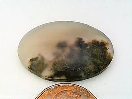 Plume Agate Gemstone Cabochon 234 - $7.90