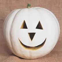 Pumpkin Seeds - Lumina (Treated)  - Gardening -  Outdoor Living - FREE SHIPPING - $44.99+