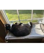Pet Cat Hammock Large Fur Bed Animal Hanging Cat Cage Comforter Ferret - $39.59