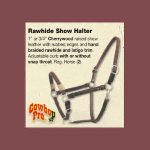 Leather and Rawhide Halter NEW Horse size