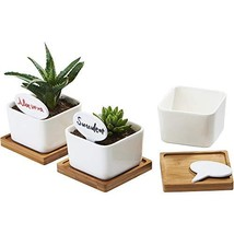 Planter Pots Indoor, Flowerplus 3 Pack 3.4 Inch White Ceramic Small Squa... - $313,18 MXN
