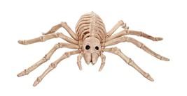 Morris Mini Skeleton Spider Prop Standard Natural - £11.80 GBP