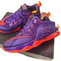 Nike Lebron James XII Low Basketball Sneakers - $69.30