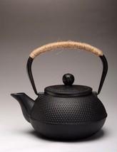 Authentic Japanese Cast Iron Teapot Set Metal Net Filter Kettle Drinkwar... - $74.24