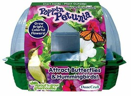 DuneCraft Sprout 'n Grow Greenhouses Poppin Petunia Plant - €22,06 EUR