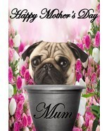 Pug  pot A5 Mother's Day Greeting Card Mother mom Codepp flowers - $4.26