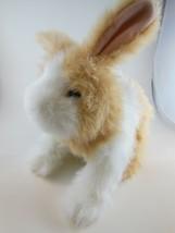 "FurReal Friends 10"" Bunny Rabbit Hops Moves Sniffs Cute ! Hasbro 2011 ADORABLE! - $11.13"