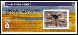 RW71A, DUCK Stamp Self-Adhesive Pane - Priced Very Low! - Stuart Katz - $23.00