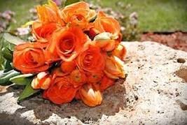 20+ ORANGE LISIANTHUS FLOWER SEEDS / LONG LASTING ANNUAL - £4.02 GBP
