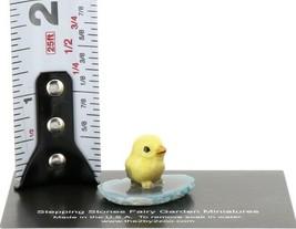 Stepping Stones Fairy Garden Miniature Baby Bird on Sliced Quartz Base #2715 image 2