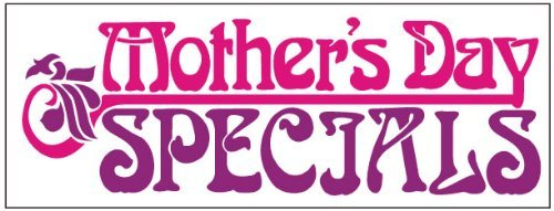 Holiday Mother's Day Specials Pink Business Banner