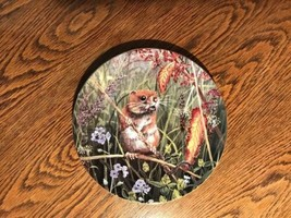 Wedgwood Woodland Wildlife Timid Field Mouse Plate Vintage China - $3.87