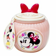 Tokyo Disney Resort Minnie Mouse Pastry Potted potato cake Pink Ribbon Case - $56.43