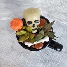 Halloween Planter with Live Succulents, Mug Garden, Skull Halloween fairy garden image 5