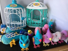 Little Live Pets 12 Birds Parakeet Owl W Cage Littlest Talking Digi LOT - $89.09
