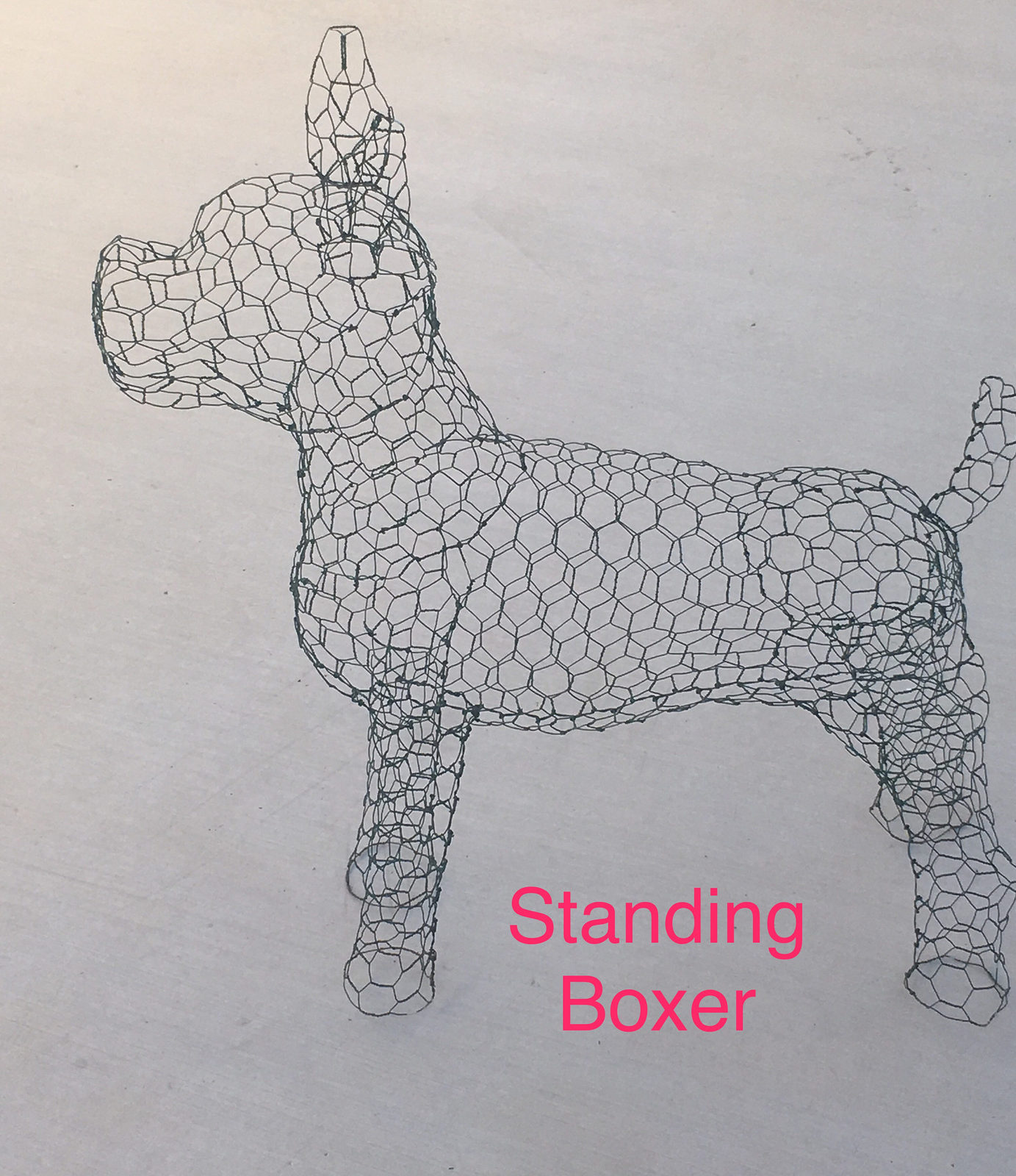 Standing Boxer Topiary Frame - $85.00