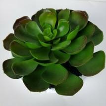 Artificial Fake Real Touch Leaf Plant Succulent Landscape Garden Home Decor - $16.09