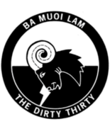 USAF Dirty Thirty Training and Air Commando Patch Sticker BA BUOI LAM - $9.89