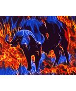 Fire Water Buffalo Animal Spirit abstract art print original nature wild... - $9.99