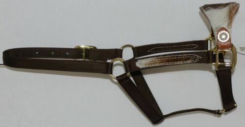 Pioneer Horse Tack Horse Show Halter Leather Hair Nylon Combnation