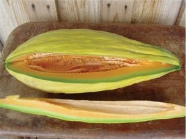 Banana melon 20 seeds rare sweet Heirloom cantaloupe musk big Heirloom 1... - $3.14