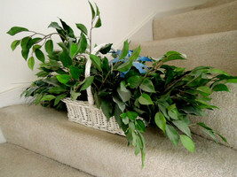 Fake Plant in Basket Artificial LOOKS REAL Iris + Frond Accents $180 Val... - $38.99