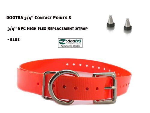 "DOGTRA 3/4"" Contact Points & 3/4"" SPC High Flex Replacement Strap - Neon Orange"