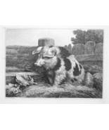 1801 ORIGINAL ETCHING Print by Howitt - Pig in Farmyard - $30.60