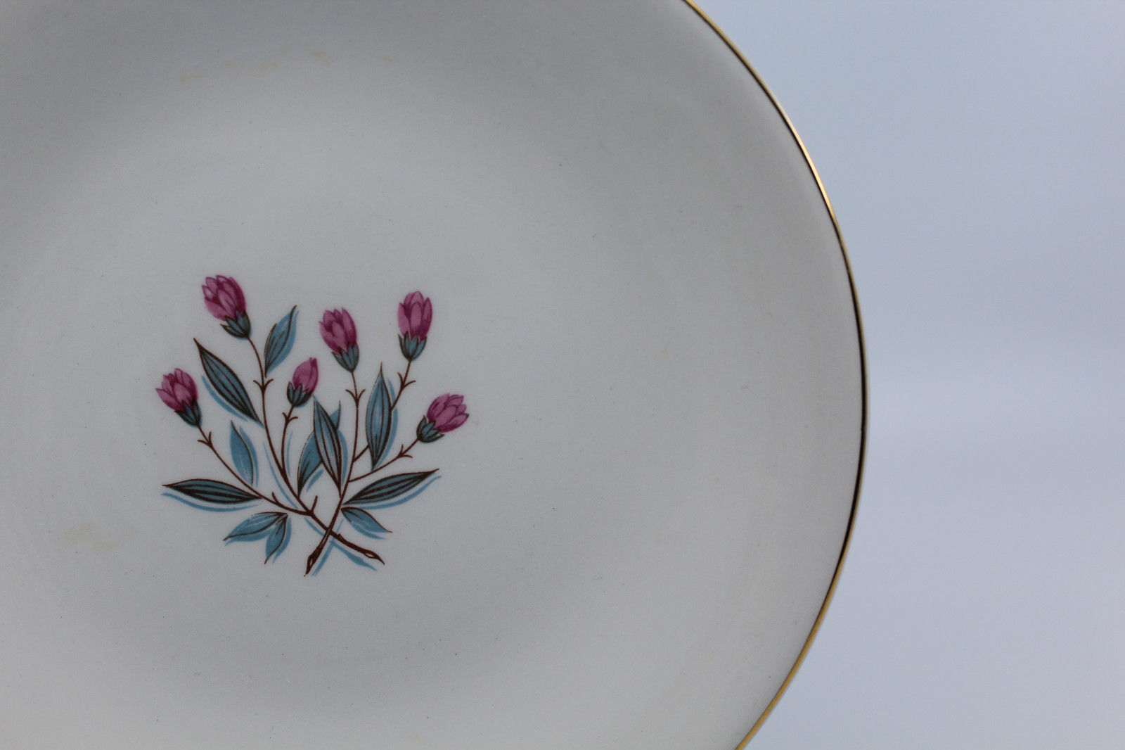 Enoch wedgwood tunstall ltd Bread and Butter Side Plate Pink Flower 17.5 cm image 6