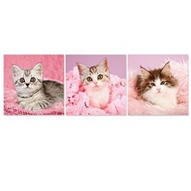 Hello Lovely Kitty Modern Canvas Art Print Cute Pet Kitten Paintings Pin... - $39.12