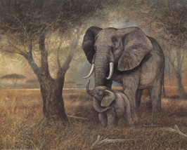 Elephant Mother And Child Cross Stitch Pattern***LOOK*** - $4.95