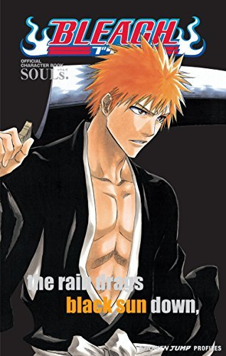 Primary image for Bleach SOULs. Official Character Book [Paperback] Kubo, Tite
